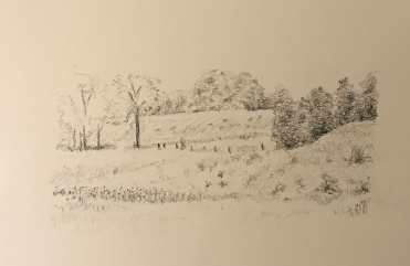 Sketch, obverse view of stand of trees in drawing Dawson's Sideroad and Fourth Concesssion