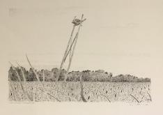 Osprey platform, Matchedash Bay