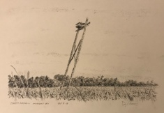 Preparatory drawing, Osprey platform, Matchedash Bay